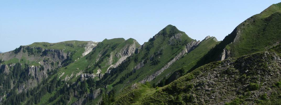 Bergkamm